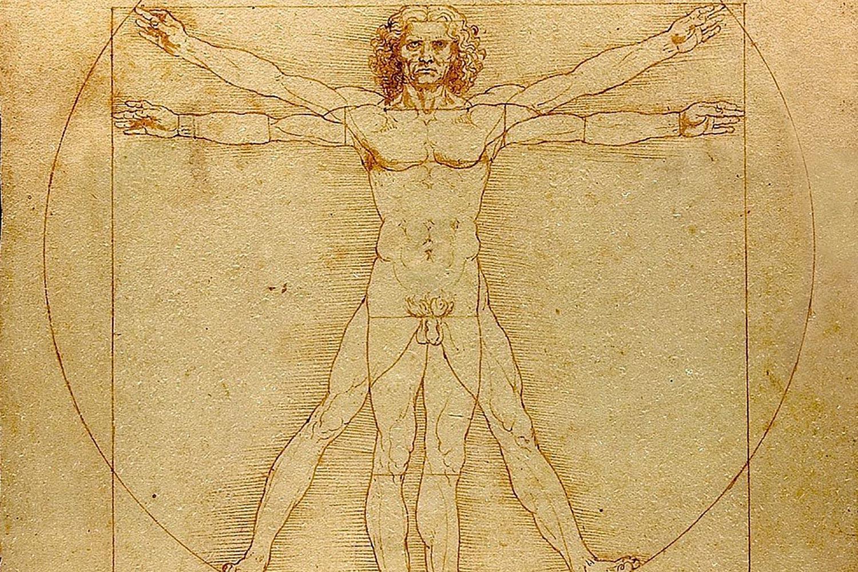 Vitruvian human