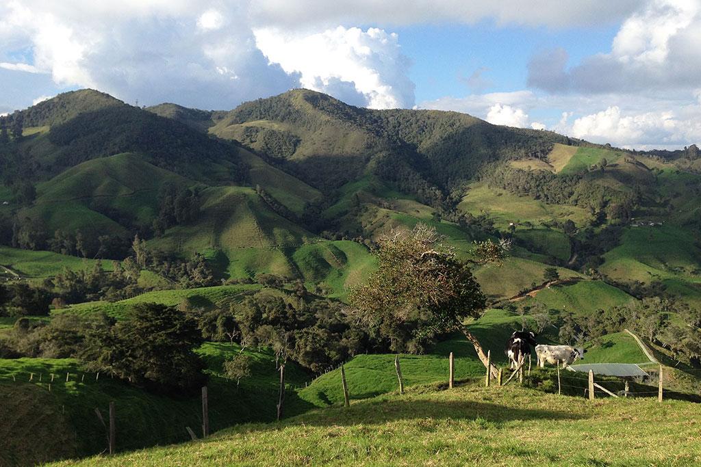 Paisaje bioregion La Colmenera